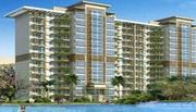 Cheap Renting Property in Sohna Gurgaon